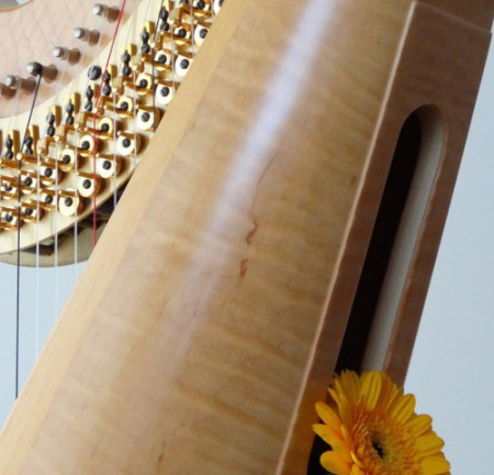 harpbloem kopie